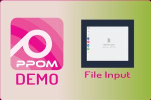 PPOM File Input